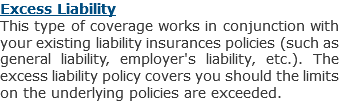 Excess Liability